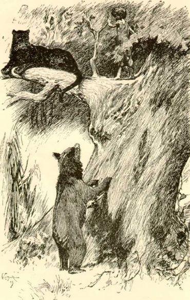 Baloo et la panthère Bagheera