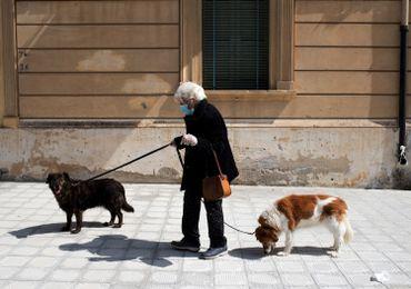 Habitante de Locri promenant ses chiens, le 08 avril
