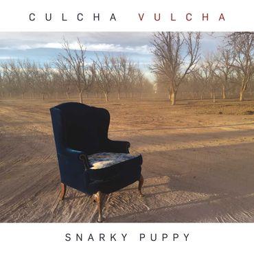 """""""Snarky Puppy"""" : quand le jazz est là"""