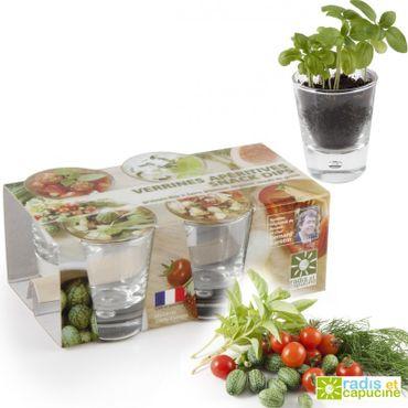 Graines de légumes apéritifs avec verrines verre