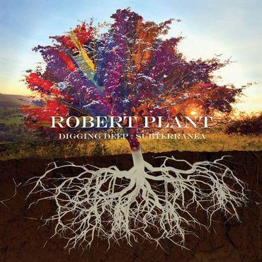 Robert Plant partage un classique rockabilly