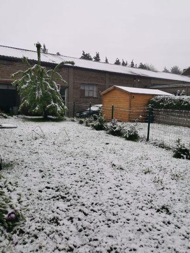 À Liège, les jardin sont blancs