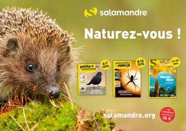 La nature racontée :Plongée dans le monde clandestin des petits bêtes de nos maisons, avec la Salamandre !