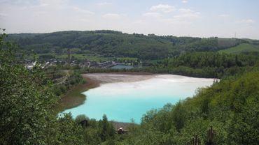Un ancien bassin de décantation recolonisé par la Nature à Seille