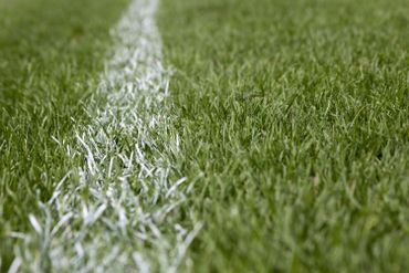 White stripe marking on green grass