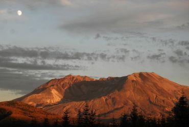 Le cratère qui désormais remplace le sommet du Mont Saint-Helens.