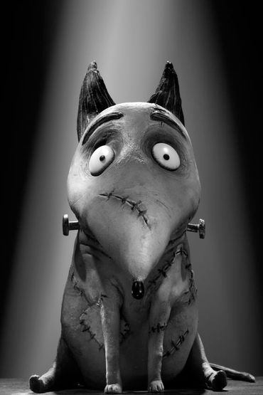 Le chien Sparky, dans Frankenweenie