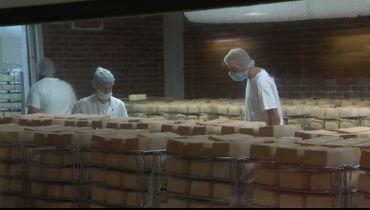 C'est à la fromagerie de l'abbaye que le fromage de Maredsous est affiné, mais la matière première vient... de France.