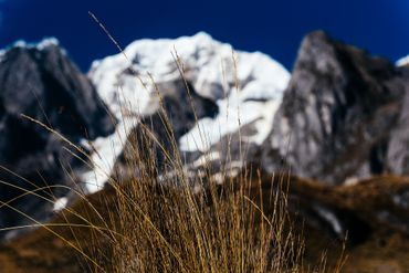 Les glaciers des Andes ont perdu plus de 40% de leur surface ces dernières années.