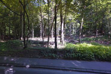 Uccle, Forêt de Soigne