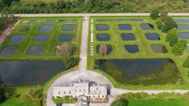 Le cadre magnifique des étangs de Freux, dans la commune de Libramont-Chevigny, abrite une pisciculture en activité depuis 1889.