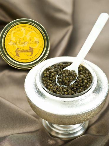"""Le caviar belge est devenu l'un des caviars d'esturgeon d'élevage les plus renommés.  Les amateurs de caviar et de nombreux chefs ont découvert et apprécient la qualité du """"Royal Belgian Caviar"""""""