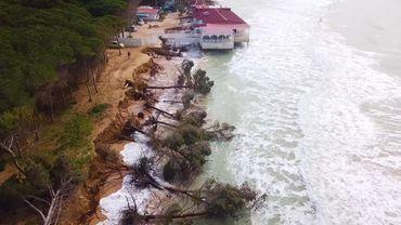 La plage d'Eraclea Minoa pendant la tempête en hiver qui a fait tomber les arbres de la pinède.