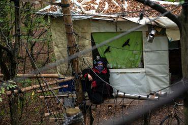 Forêt de Hambach en Allemagne : expulsion de militants écologistes