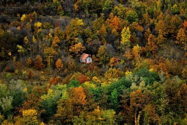 10 photos de petites maisons complètement isolées dans les bois