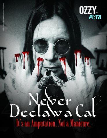 """Ozzy Osbourne: """"n'amputez pas les chats!"""""""