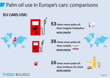 Comparaisons de l'utilisation de l'huile de palme dans les carburants en Europe.