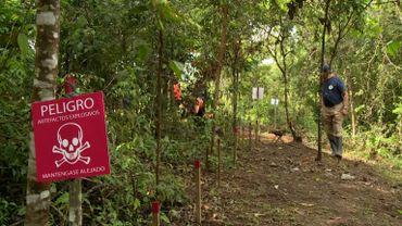Déminer la Colombie, la mission d'anciens rebelles Farc