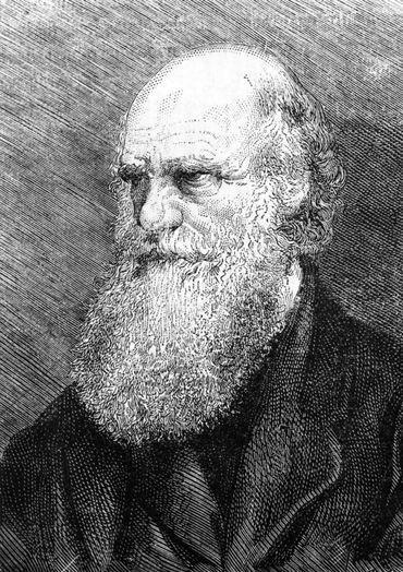 SCIENCE-BIOLOGY-HISTORY-DARWIN