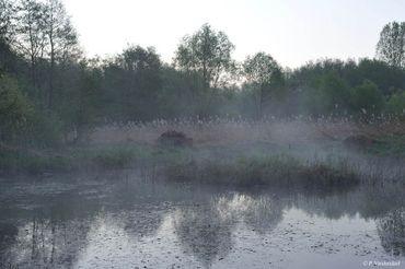 La réserve Ru Milhoux