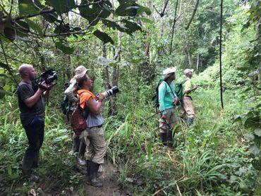 A la recherche des singes de la réserve naturelle de Baranquilla