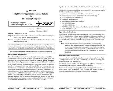 Crash du Boeing 737 Max : un stabilisateur incriminé