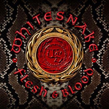 Nouveau titre de Whitesnake