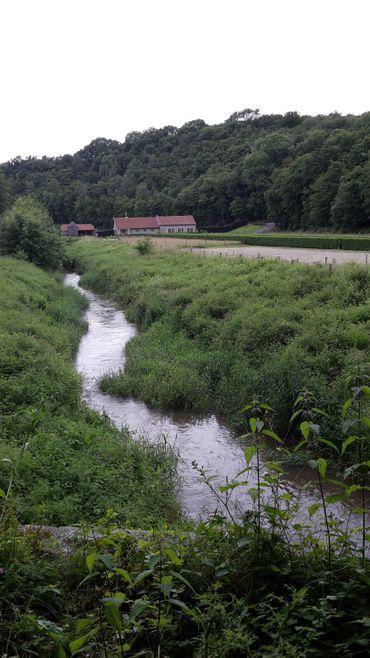 La Hantes est un affluent de la Sambre, qui prend naissance à Froidchapelle