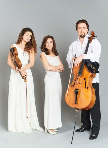 Le trio Carlo Van Neste