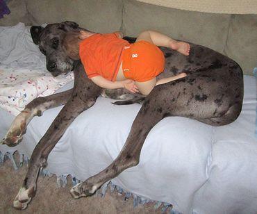 10 photos qui prouvent que les enfants peuvent vraiment s'endormir partout