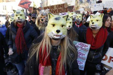 Manifestation pro-loups à Nice, en 2016