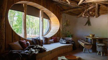 Full Moon Lodge. Somptueux lodge de caractère avec une vue imprenable sur nos grands mammifères (ours et loups)