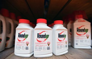 Des produits de la firme Monsanto