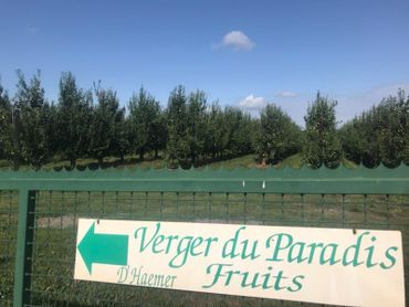 Les 34 hectare de poires et 33 de pommes sont protégés grâce à ce dispotif