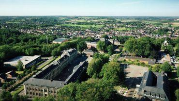 Conçu au XIXe siècle comme parc d'agrément et de collection, le parc de Mariemont intègre un certain nombre d'arbres multiséculaires qui remontent à l'ancien domaine royal