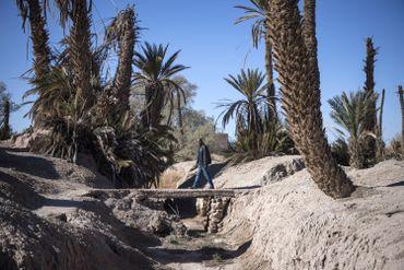 Canal d'irrigation dans l'oasis de Skoura, le 27 janvier