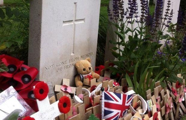 Dans les pays du Commonwealth, le coquelicot est associé à la mémoire de ceux qui sont morts à la guerre.  - Malex Azoug ©