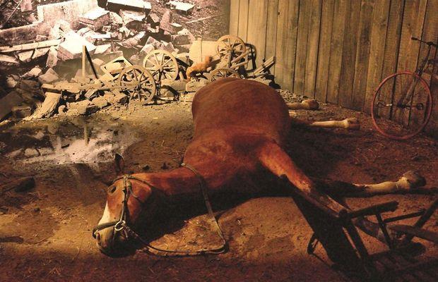 Reconstitution, cheval mort dans les décombres d'un village  - Liège Expo 14-18, 2014 ©