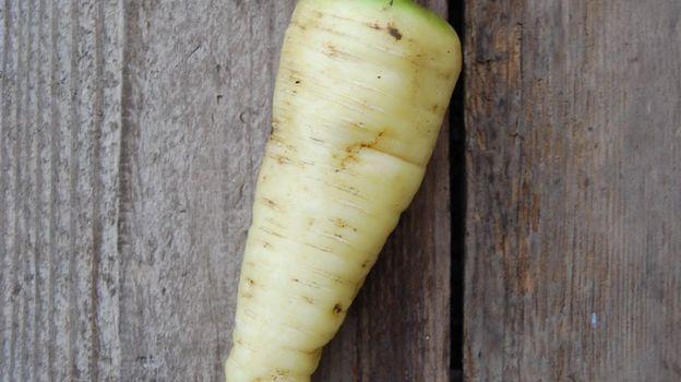 carottes Blonde de Küttigen