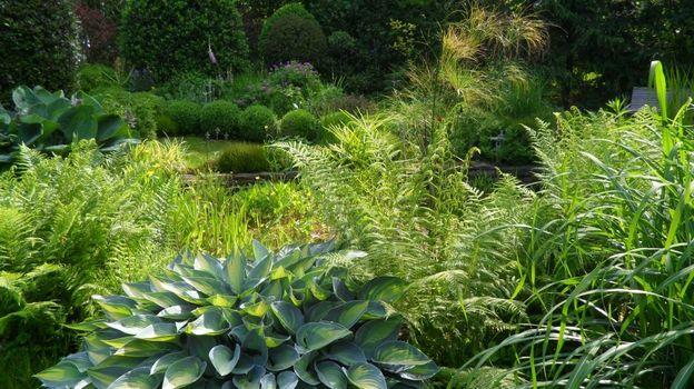 le jardin l 39 ombre des grands pins fraipont rtbf jardins loisirs. Black Bedroom Furniture Sets. Home Design Ideas