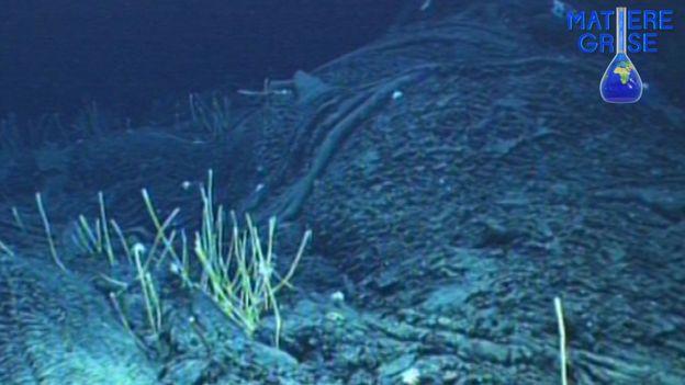 Matière Grise Doc : Mystères des profondeurs