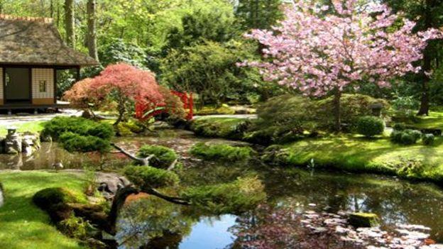 le jardin japonais clingendael à la haye / vidéo - rtbf jardins loisirs