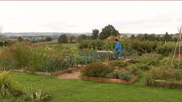Chaque parcelle est cultivée sur le principe de la permaculture