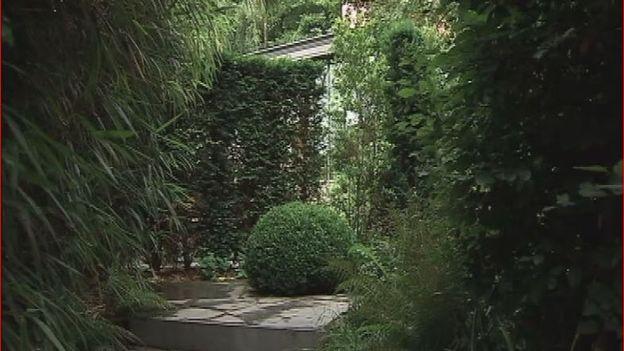 Le jardin de Nicolas et Petrus