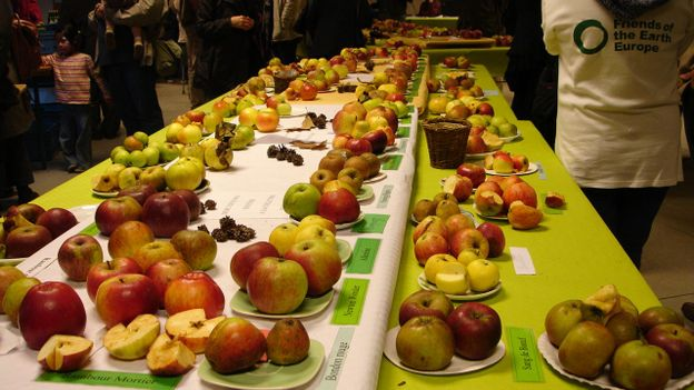 Une journée dédiée aux pommes.