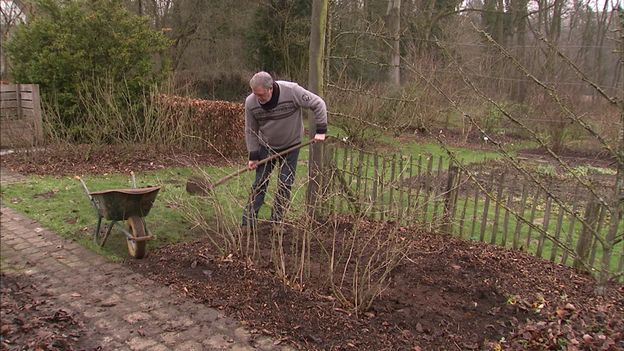 Un apport de bon compost pour nourrir les plantes