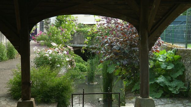 Chédigny, le village aux 1000 rosiers et 3000 vivaces