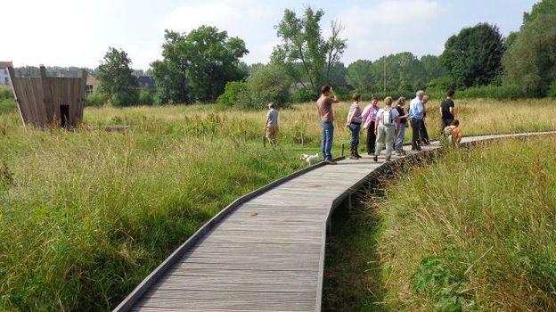 La réserve naturelle domaniale des marais de Hosdent