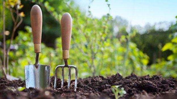 Cours jardinage bio
