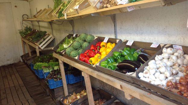 Fruits et de légumes bio à Nodeabais.